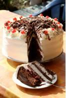 delectable-looking chocolate layer cake