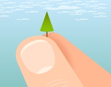 tiny tree in someone's hand